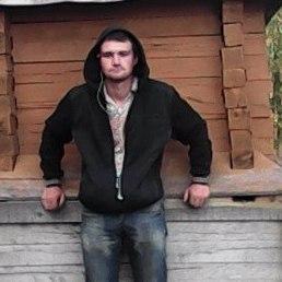 Алексей, Ефремов-3, 27 лет