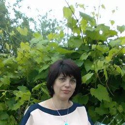 Светлана, 47 лет, Белолуцк