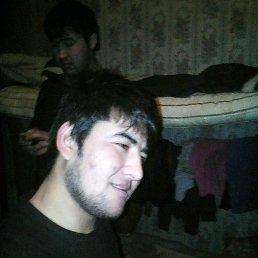 Руслан, 28 лет, Луховицы