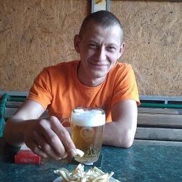 Sanek1389, 32 года, Новомиргород