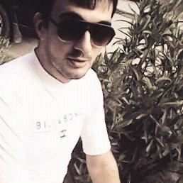 Гриша, 29 лет, Сочи