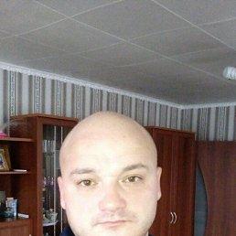 Рустем, 41 год, Агрыз