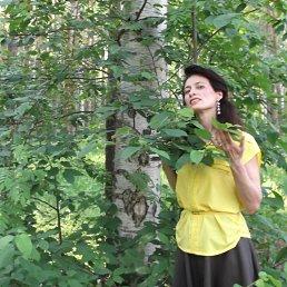 Светлана, 50 лет, Пермь