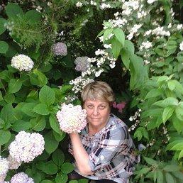 людмила, 60 лет, Иваново