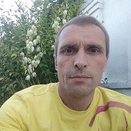 Роман, 41 год, Геническ
