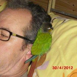 Michael, 59 лет, Томилино