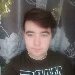 Андрей, 24 года, Хотин