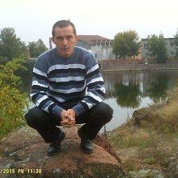 Николай, 40 лет, Коростень
