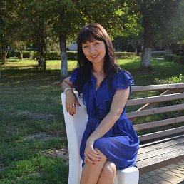 Светлана, 41 год, Александрия