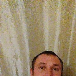 Андрей, Краснодар, 36 лет