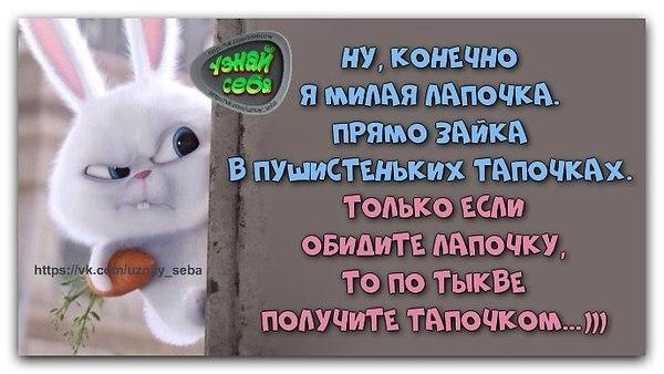 """""""ИНЬ и ЯН"""" - 22 марта 2019 в 00:53"""