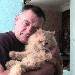 алексей, 64 года, Новоград-Волынский