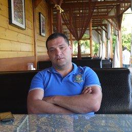 Эльдар Д, 34 года, Краснодар