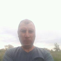 Иван, 45 лет, Близнюки