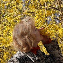 Екатерина, Санкт-Петербург, 58 лет