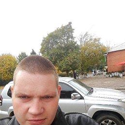 Виталий, 29 лет, Кировоград