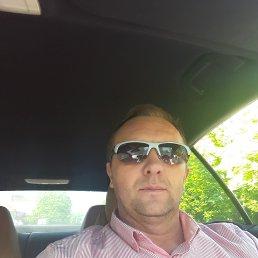 Виктор, 44 года, Берегово