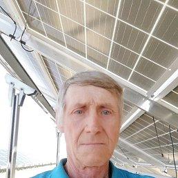 Юрий, 64 года, Александрия
