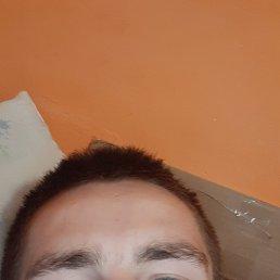 Андрій, 23 года, Берегово