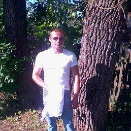 денис, 36 лет, Медвежьегорск