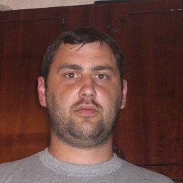 Сергей, 40 лет, Ковель