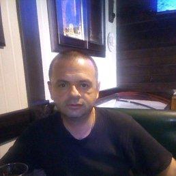 Василий, 41 год, Иршава