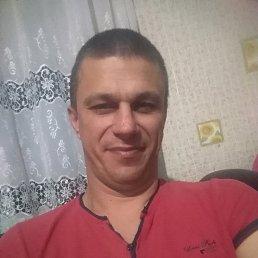 Серёжа, 38 лет, Голая Пристань