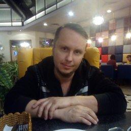 Евгений, 42 года, Рыбинск