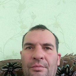 Саша, 43 года, Красноград