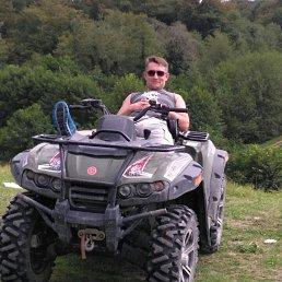 Алексей, 43 года, Селятино
