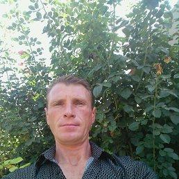 Серёга, 39 лет, Новая Одесса