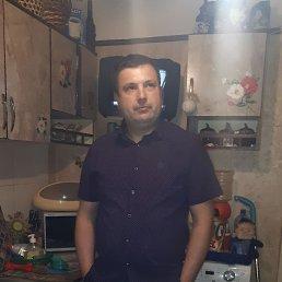 Илья, 33 года, Клин