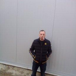 Илья, 28 лет, Ярцево-Гурьево