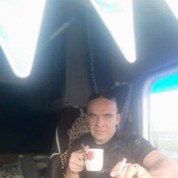 Дмитрий, 41 год, Вольск