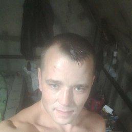 Толик, 28 лет, Шаховская