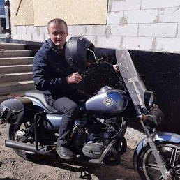 Святослав, 44 года, Малин