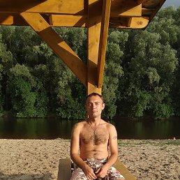 Руслан, 32 года, Лубны