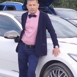 Алексей, 39 лет, Тольятти
