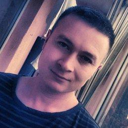 Михаил, 31 год, Калининград