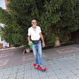 Игорь, 49 лет, Сочи