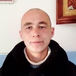 Юрий, 44 года, Задонск