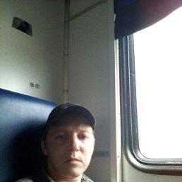 Денис, 32 года, Алейск