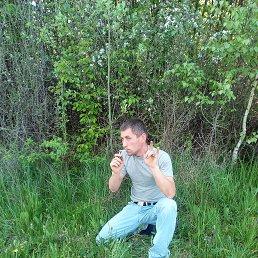 Максим, Калининград, 29 лет