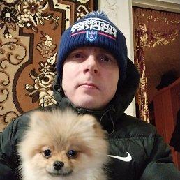 Cergej, 36 лет, Сясьстрой