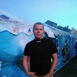 Андрей, 49 лет, Первомайск