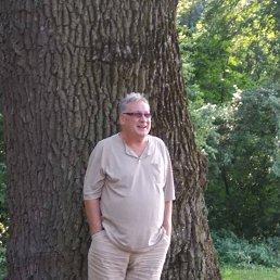 Александр, 58 лет, Полтава