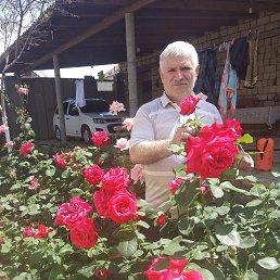 Кудрет, 62 года, Дагестанские Огни