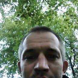 Максим, 36 лет, Рязань