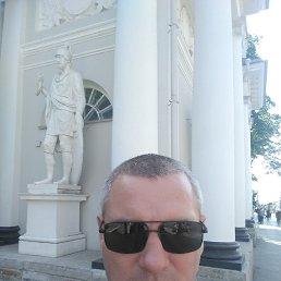 Сергей, 44 года, Кингисепп