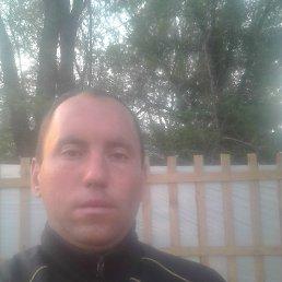 Дмитрий, 32 года, Мариуполь